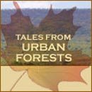 Tales From Urban Forests